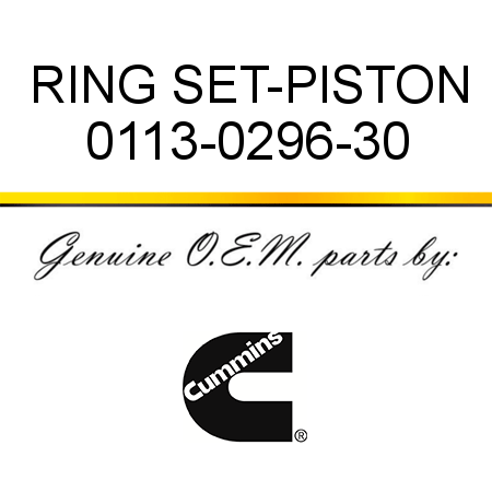 RING SET-PISTON 0113-0296-30