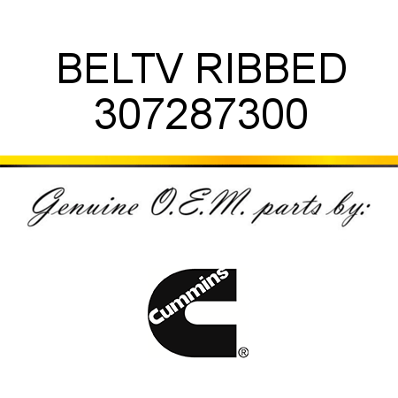 307287300 BELT,V RIBBED (3072873) fit CUMMINS ISM CM570, ISM