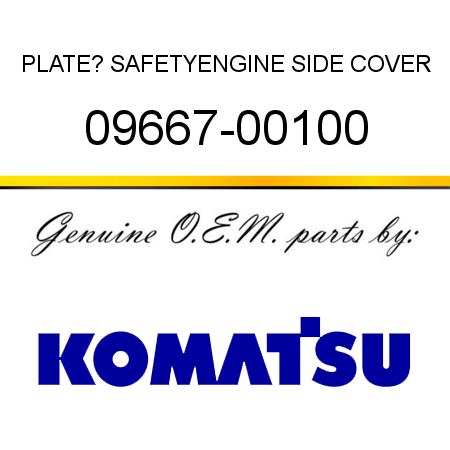 PLATE? SAFETY,ENGINE SIDE COVER 09667-00100